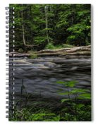 Prairie River Log Jam Spiral Notebook
