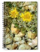 Prairie Rock Garden Spiral Notebook