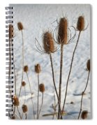 Prairie Seedheads Spiral Notebook