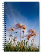 Prairie Smoke Spiral Notebook