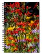 Prairie Wildflowers 2 Spiral Notebook