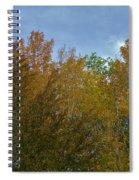 Praiseworthy Palate Spiral Notebook