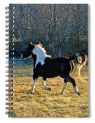 Prance Spiral Notebook