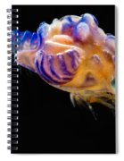 Prawn Larva Spiral Notebook
