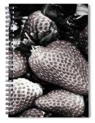 Pre Eaton Mess Spiral Notebook