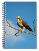 Pre-take Off Pose Spiral Notebook