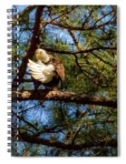 Preening Bald Eagle Spiral Notebook