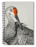 Preening Crane Spiral Notebook