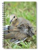 Preening Dove Spiral Notebook