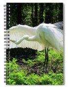 Preening The Wings Spiral Notebook