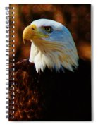 Preexisting Freedom Spiral Notebook