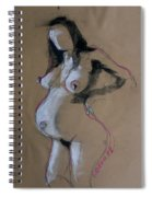 Pregnant Woman 3 Spiral Notebook