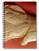 Prehistoric Bison Carving Spiral Notebook