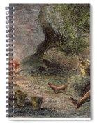 Prehistoric Man: Pottery Spiral Notebook
