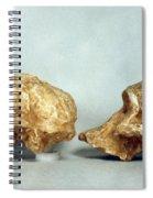 Prehistoric Skulls Spiral Notebook