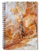 Prehistoric Trees Spiral Notebook