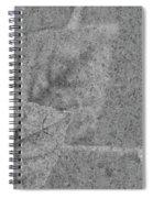 Preserved In Stone Spiral Notebook