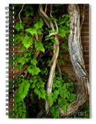 Preston Wall Vine Spiral Notebook
