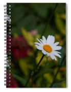 Pretty And Everlasting Spiral Notebook