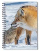 Pretty Boy's Smile Spiral Notebook