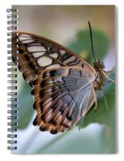 Pretty Butterfly Resting On The Leaf Spiral Notebook