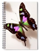Pretty Butterfly Spiral Notebook