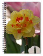 Pretty Daffodil Spiral Notebook