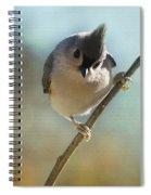 Pretty Eyes Spiral Notebook