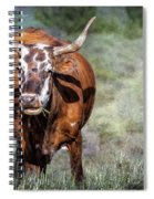 Pretty Female Cow With Horns Spiral Notebook