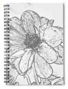 Pretty Flower Spiral Notebook