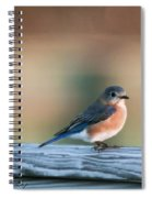 Pretty In Blue Spiral Notebook