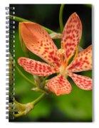 Pretty In Orange Spiral Notebook
