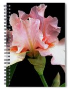 Pretty In Pink - Bearded Iris Spiral Notebook