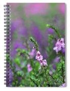 Pretty In Pink N Purple Spiral Notebook