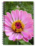Pretty In Pink Zinnia Spiral Notebook