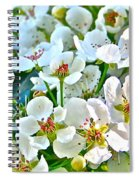 Pretty In White Spiral Notebook