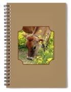 Pretty Jersey Cow - Vertical Spiral Notebook