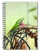 Pretty Penny 1 Spiral Notebook
