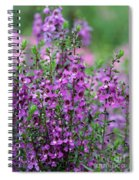 Pretty Pink And Purple Flowers Spiral Notebook