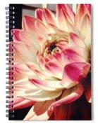 Pretty Pink Spiral Notebook