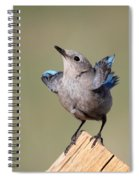 Pretty Pose Spiral Notebook