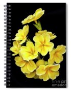 Pretty Primrose Spiral Notebook