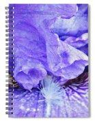 Pretty Purple Spiral Notebook