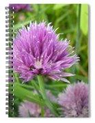 Pretty Purple Chive Flower Spiral Notebook
