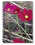 Pretty Red And Yellow Flowers In The Twigs Spiral Notebook