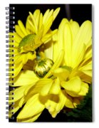 Pretty Yellow Flowers Spiral Notebook