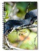 Prey Beware Spiral Notebook
