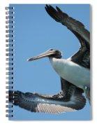 Prey Spotted Spiral Notebook