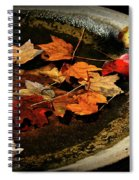 Priceless Leaves Fall Spiral Notebook