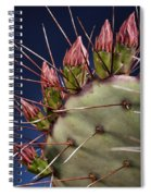 Prickly Buds Spiral Notebook